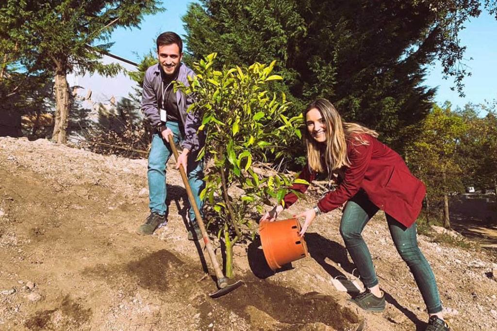 Celebrámos o Dia da Árvore plantando mais!
